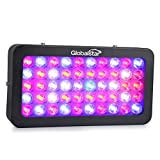 Global Star G02-50x6w Plus Horticulture Full Spectrum 300w Black LED Grow Light for Indoor Plant Growing,one Switch for Leaf,another for Flowering