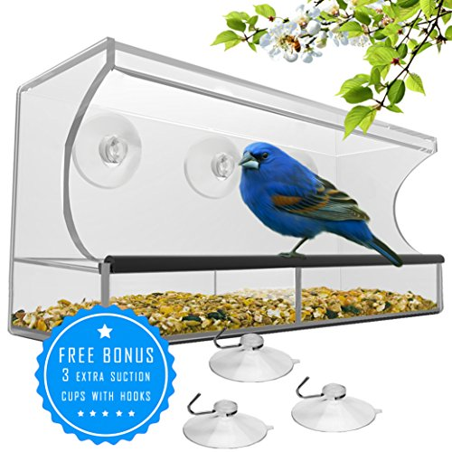 51DHRbFAk6L - BEST WINDOW BIRD FEEDER with Strong Suction Cups & Seed Tray, Outdoor Birdfeeders for Wild Birds, Finch, Cardinal, Bluebird, Large Outside Hanging Birdhouse Kits, Drain Holes + 3 Extra Suction Cups