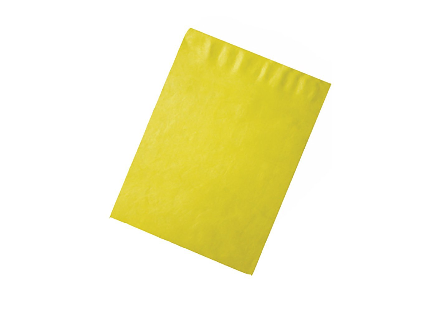 RetailSource E151201YT10 Tyvek Envelopes 15.5 x 12 x 1 Yellow Pack of 10