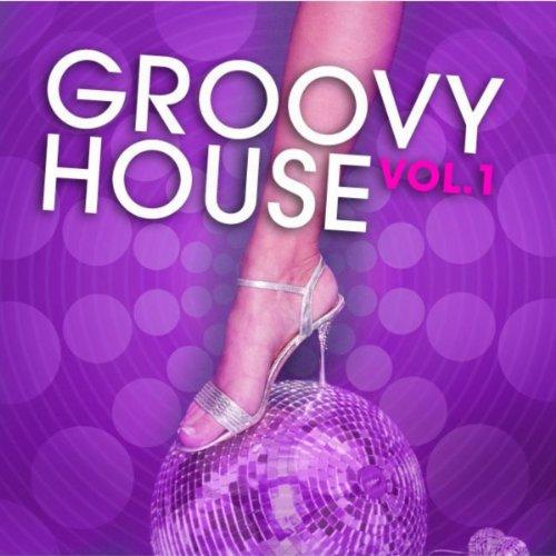 Groovy house vol 1 various artists mp3 for Groovy house music