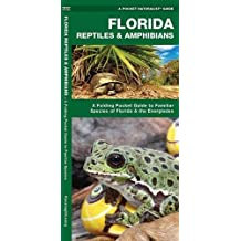 Florida Reptiles & Amphibians: A Folding Pocket Guide to Familiar Species of Florida & the Everglades