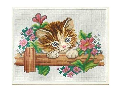 Kit de punto de cruz, diseño de gato y flores, patrón ...