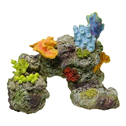 Exotic Coral Reef (Blue Ribbon EE-1740 Exotic Environments Coral Reef Rock Aquarium Ornament)