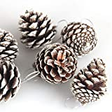 Heitaisi 6 Pieces 5CM Christmas Pine Cone Pendant - Christmas Decoration - Natural Pine Cone Dyed Small Pine Cone Ornaments