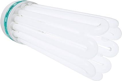 AgroBrite FLB125W Bulb Comp FL Warm 125W 2700K