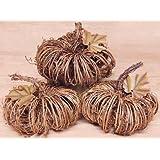 Natural Woven Grapevine Twig Pumpkin Metal Leaf Country Primitive Harvest Holiday Décor