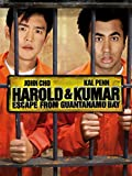 Harold and Kumar Escape from Guantanamo Bay (AIV)