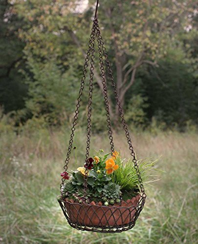 Cotta Basket Terra - Oval Hanging Wire Basket with Terra Cotta Pot in Green/Rust