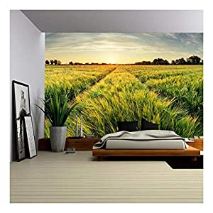 wall26 – Rural Landscape with Wheat Field on Sunset – Removable Wall Mural | Self-Adhesive Large Wallpaper – 66×96…