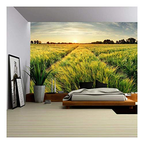 - wall26 - Rural Landscape with Wheat Field on Sunset - Removable Wall Mural | Self-Adhesive Large Wallpaper - 100x144 inches