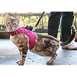 Mynwood Cat Jacket/Harness Pink Adult