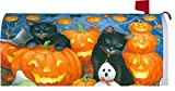 """ BLACK CAT PUMPKIN "" - Magnetic Mailbox Makeover Cover - HALLOWEEN Theme"