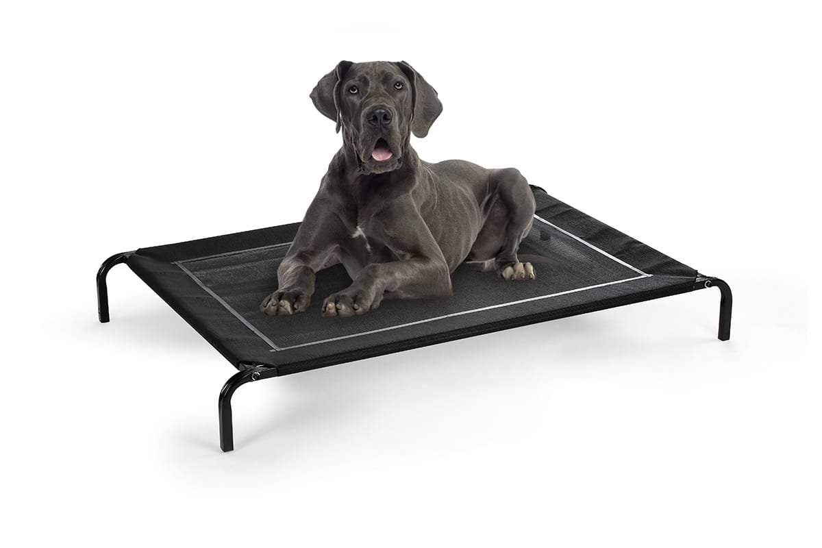 New Pawever Dog Bed Trampoline Extra Large 144.0 x 90.0 x 15.0cm Dog Supplies