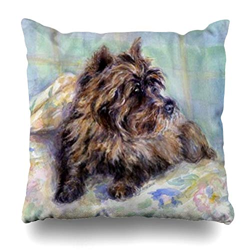 - Ahawoso Throw Pillow Cover Square 20x20 Inches Cairn Terrier Dog Portrait Decorative Pillow Case Home Decor Pillowcase