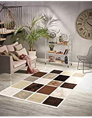 Clearance Area Rugs - Living Room Area Rug - Non Shedding Abstract Rug for Bedroom or Dining Room