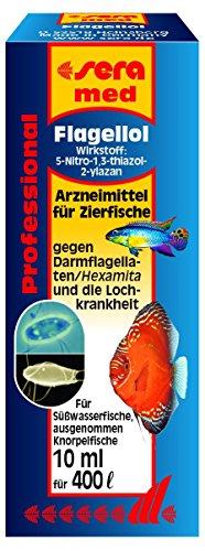 sera 02202 med Professional Flagellol 10 ml - Arzneimittel für Zierfische gegen Darmflagellaten und andere einzellige Darmparasiten