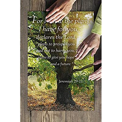 Jeremiah 29:11 - Inspirational (Premium 500 Piece Jigsaw Puzzle for Adults, 13x19, Made in USA!): Toys & Games
