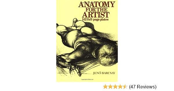 Amazon.com: Anatomy For The Artist (9781586631741): Jeno Barcsay: Books