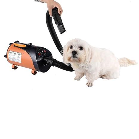yunt – Tendedero secador Silencioso sèche-poils acicalado 2800 W para perro/ gato de