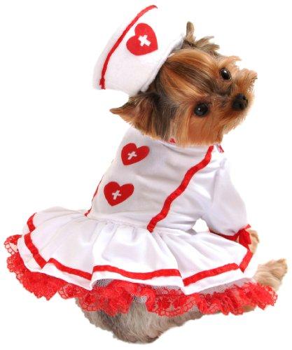Anit Accessories Cutie Nurse Dog Costume, Large (Dog Halloween Costume Squirrel)
