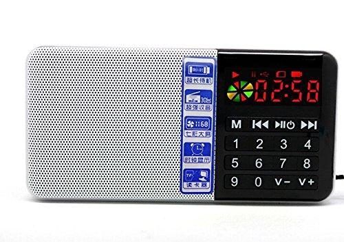 NEW Hi-Rice SD-111 Digital FM radio Time Clock USB TF Mp3 Pl