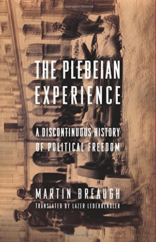 The Plebeian Experience: A Discontinuous History of Political Freedom (Columbia Studies in Political Thought / Political