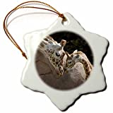 3dRose orn_96857_1 Mother and Baby Giraffe, San Francisco Zoo-Us48 Tau0001-Tananarive Aubert-Snowflake Ornament, 3-Inch, Porcelain