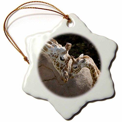 3dRose orn_96857_1 Mother and Baby Giraffe, San Francisco Zoo-Us48 Tau0001-Tananarive Aubert-Snowflake Ornament, 3-Inch, Porcelain by 3dRose