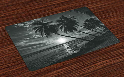 Ambesonne Tropical Place Mats Set of 4, Coconut Palm Trees on Beach Bend by The Wind Horizon Over The Sea Picture, Washable Fabric Placemats for Dining Room Kitchen Table Decor, Black and White (Black Room White Dining Ideas And)