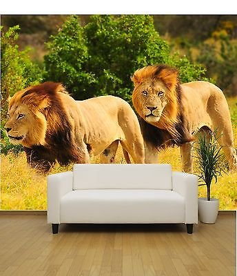 Lions Safari Nature wallpaper mural feature wall design wm007