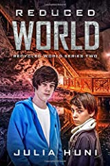 Reduced World: Recycled World Two Paperback