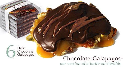 Pecan Accent - Chocolate Galapagos - Six with Dark Chocolate