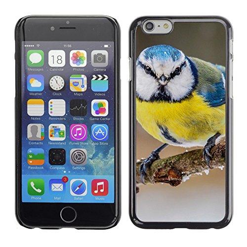 """Premio Sottile Slim Cassa Custodia Case Cover Shell // V00003006 oiseau bleu jaune // Apple iPhone 6 6S 6G 4.7"""""""