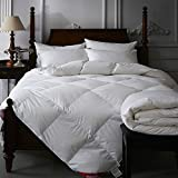 75/25 Goose Down and Feather Comforter 300 Thread Count Queen Size 100% Egyptian Cotton - Baffle Box Design - 750FP - Solid White