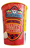 Paw Patrol Marshall Toothbrush & Toothpaste Bundle: 3 Items - Spinbrush Toothbrush, Orajel Bubble Berry Toothpaste, Kids Character Rinse Cup