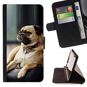 Momo Phone Case / Flip Funda de Cuero Case Cover - Perro del barro amasado gru?ón Small Brown dormir lindo - Sony Xperia Z3 D6603