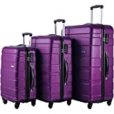 Merax Afuture 3 Piece Set Lightweight Luggage Spinner Suitcase (Purple)