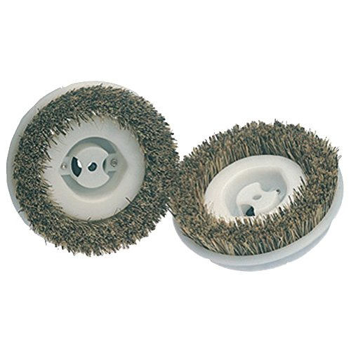 Koblenz 45-0134-2 Floor Scrubbing Brushes, 2-Pack ()