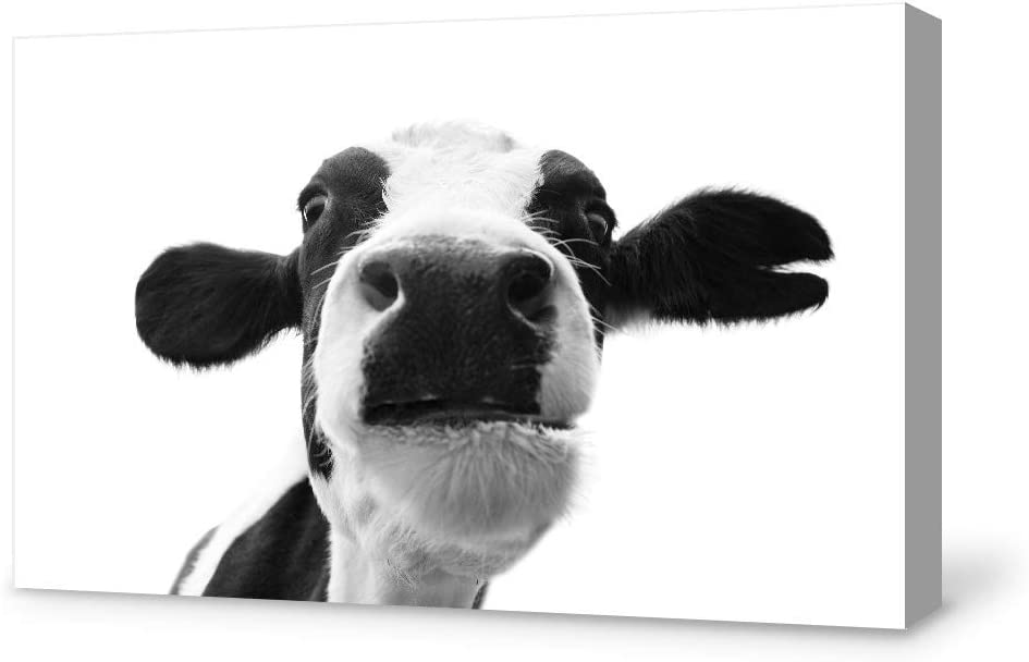SIGNFORD Canvas Wall Art Humor Cow Canvas Painting Wall Poster Decor for Living Room Framed Home Decorations - 12x18 inches