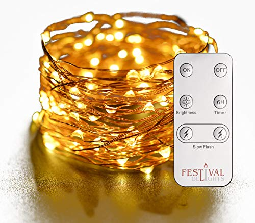 Festival Delights Fairy Lights- LED String Lights with Remote and Timer (60 LEDs)