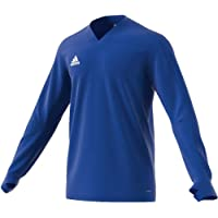 2018-19 Northern Ireland Adidas Training Top (Blue)