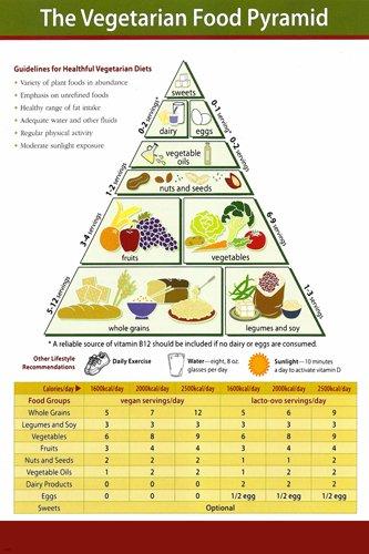 Amazon.com: VEGETARIAN FOOD PYRAMID EDUCATIONAL POSTER 24X36 ...