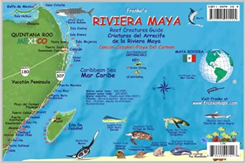 riviera maya mexico map reef creatures guide franko maps laminated fish card franko maps ltd 9781601901415 amazoncom books