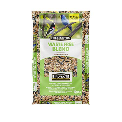 Which are the best mixed seeds for birds available in 2019?