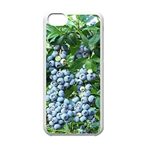 YChaoQ(R) Custom Cover Case for Iphone 5C - Blueberries (YCQ#601715)