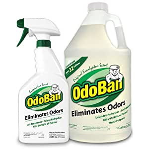 OdoBan Odor Eliminator RTU, 1qt Spray Bottle, W1 Gallon Concentrate, Original Eucalyptus Scent