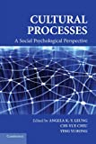 img - for Cultural Processes: A Social Psychological Perspective (Culture and Psychology) book / textbook / text book