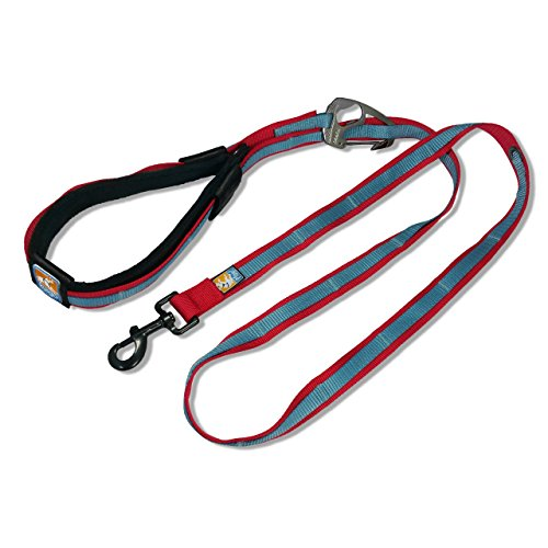 Kurgo Quantum Dog Leash Blue