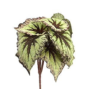Factory Direct Craft Artificial Begonia Leaf Bush | 2 Pieces 96