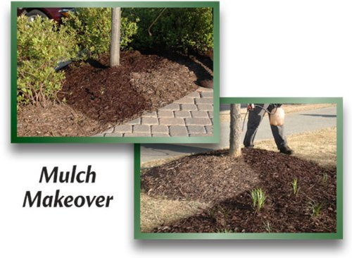 EnviroColor CB0032 851612002032 2,400 Sq. Ft. Cocoa Brown Mulch Color Concentrate, 2400 Square Feet by EnviroColor (Image #4)